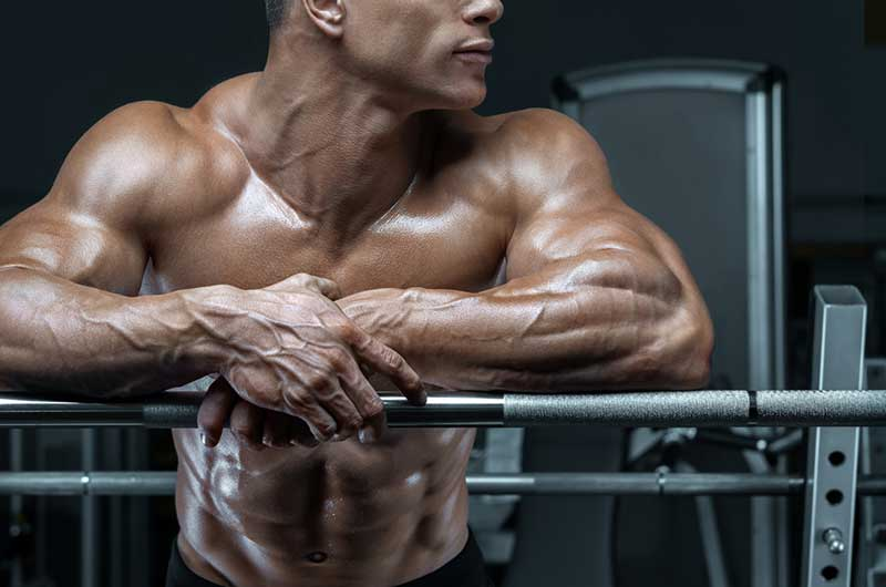 Body Builder with A Guide Towards Building Your Symmetric Strength